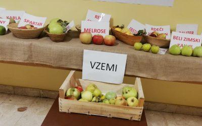 Razstava jabolk v Liziki
