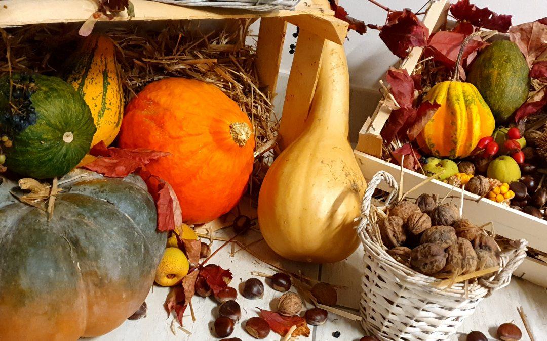 Jesen v Liziki